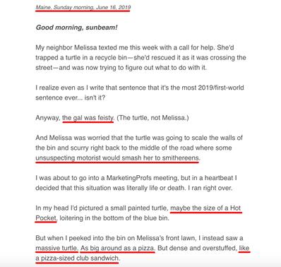 Ann Hadley Email Newsletter