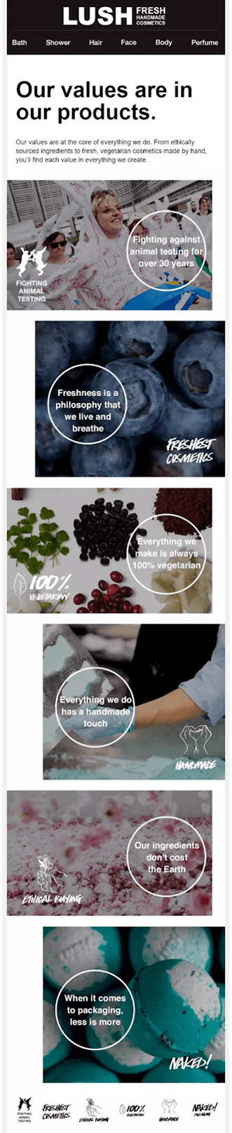 email marketing consultant example lush